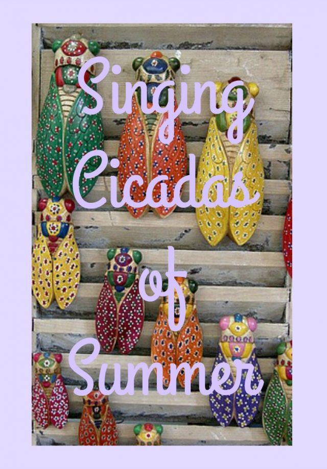 singing cicadas summer | Lou Messugo
