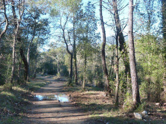 walk castellas roquefort les pins