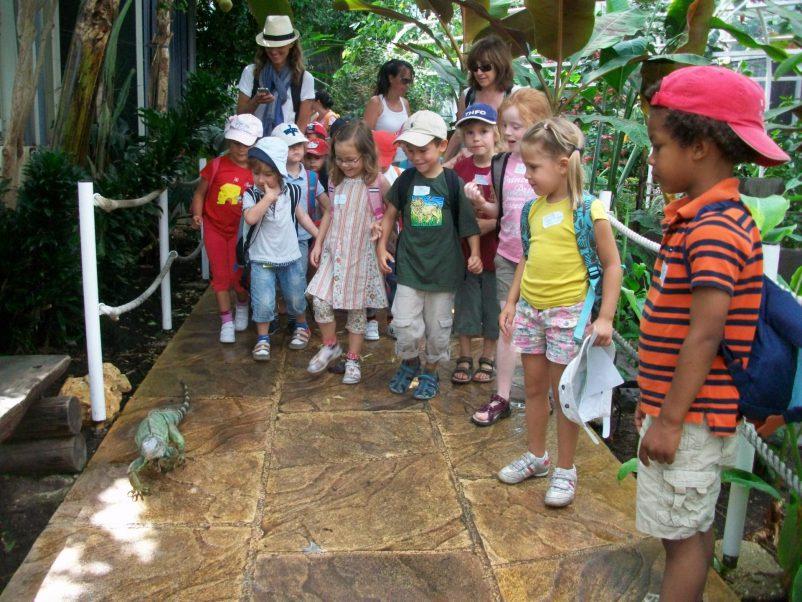 iguana parc phoenix