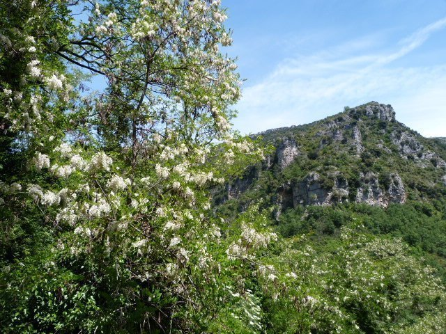 secret paradise river walk