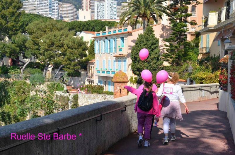 Pink Walk 2