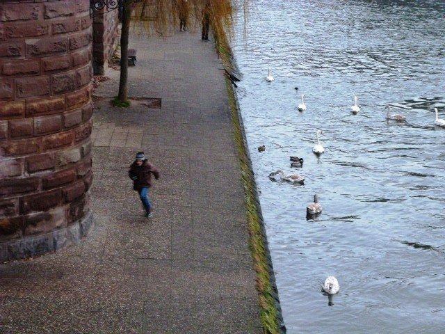 Petite France Strasbourg 5