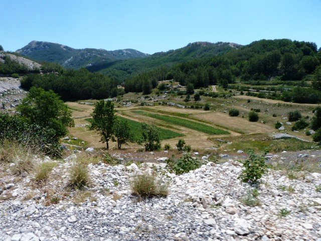 Lovcen road country view