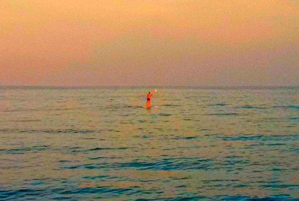 Silent Sunday – 28 June 2015