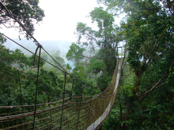 family adventure French Guyana