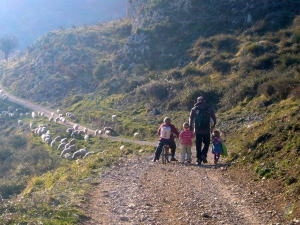 walk in the hills with kids