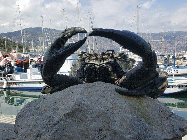 crab in St Jean Cap Ferrat port