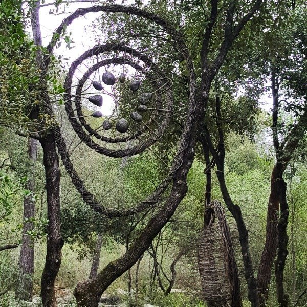 Sunday Photo – Forest Art