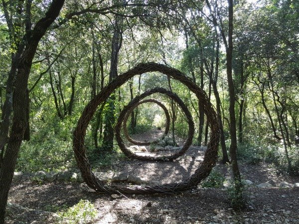 A year in a French forest: magical forest art