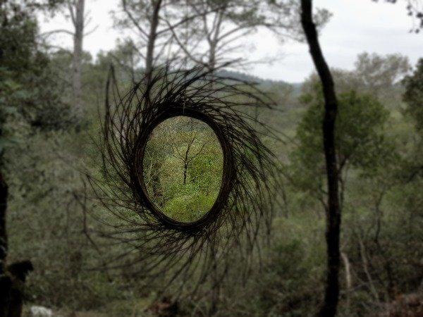 forest art sun
