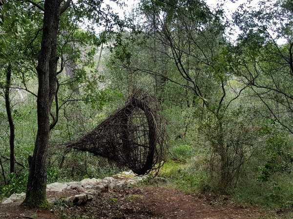 forest art trap