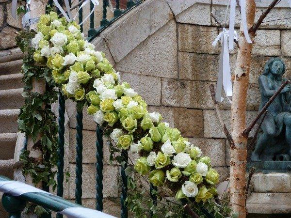 roses in grasse 06
