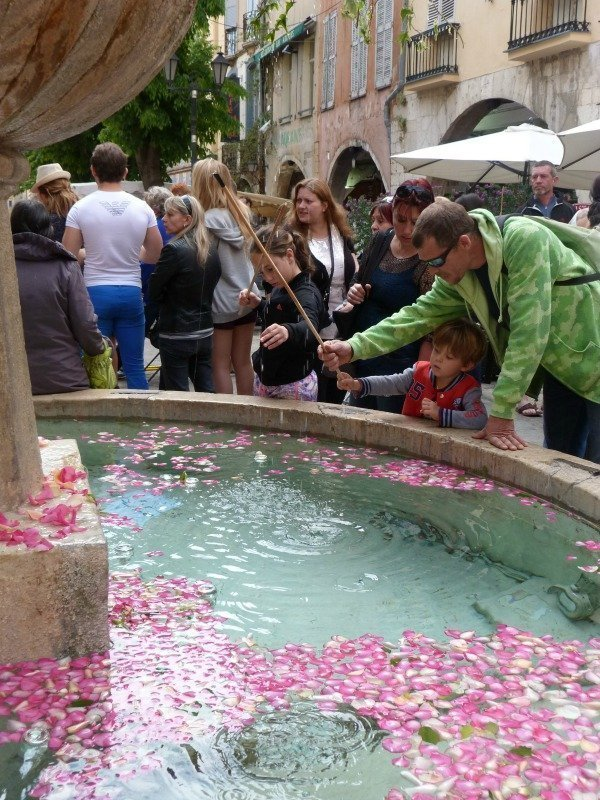 roses in grasse fountain