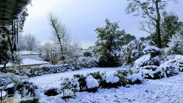 Lou Messugo garden in snow