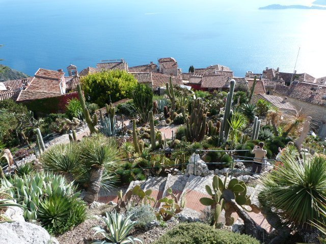 The exotic hanging gardens of Eze