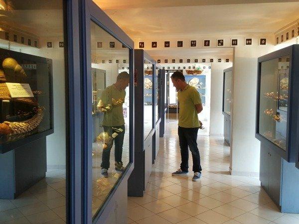 musée_des_coquillages_intérieur
