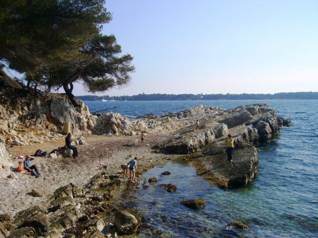 picnic_île_ste_marguerite