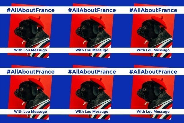 AllAbout France linky 37 | Lou Messugo