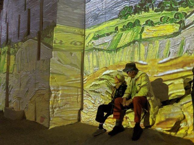 Van Gogh Immersive Exhibition in Provence