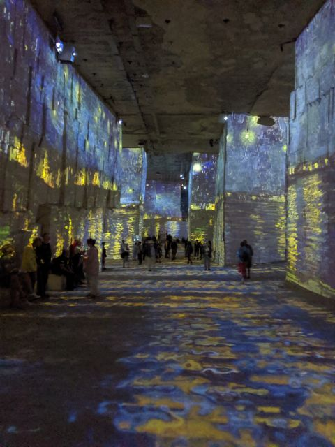 Van Gogh immersive exhibition Provence | Lou Messugo