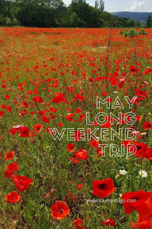 poppy field on a long weekend trip