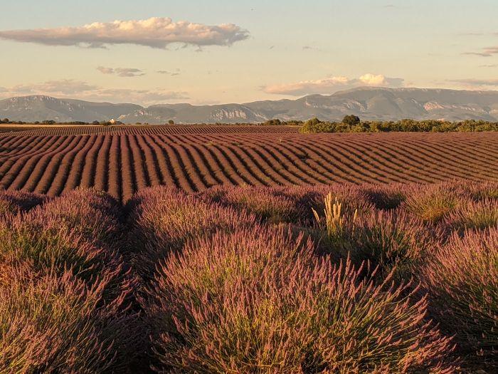 Plateau de Valensol | Lou Messugo