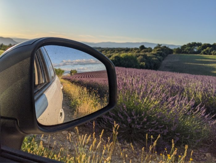lavender in rearview mirror | Lou Messugo