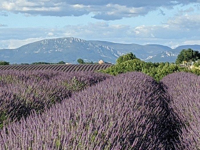 Valensol plateau Provence