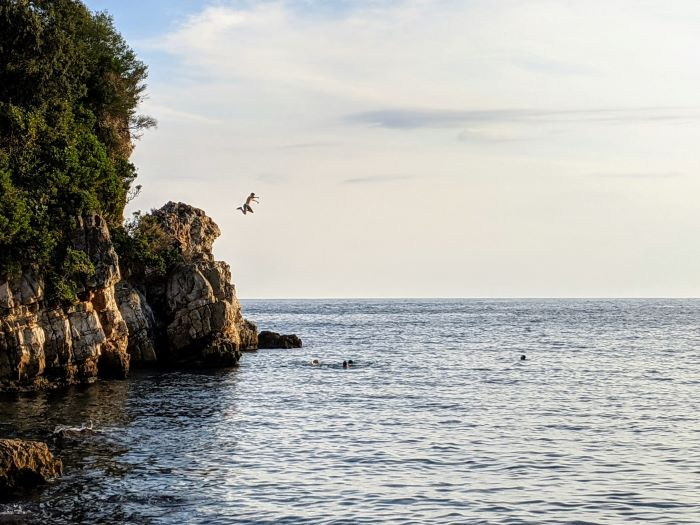kid jumping of rock into the sea cap d'Antibes