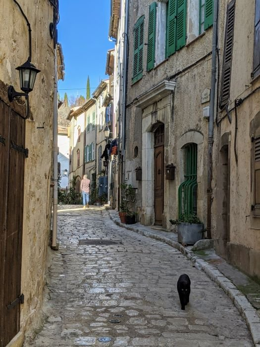 cobbled street with cat in charming village in the Var
