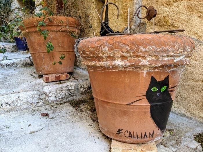 flower pots in Callian village in the Var